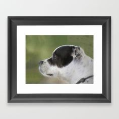 A lovely print of a Staffie (Staffordshire) puppy.dog. Choose from a variety of frame styles, colors and sizes to compliment your…