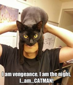 I am the night // funny pictures - funny photos - funny images - funny pics - funny quotes - #lol #humor #funnypictures