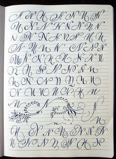 Majuscule N variants by Polish calligrapher Barbara Galinska on Behance