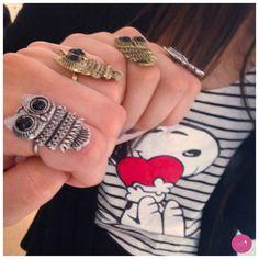 As corujas invadiram os anéis! #Vemprazas