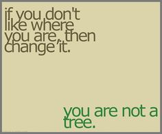 You are not a tree!