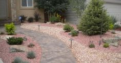xeriscape colorado - Google Search
