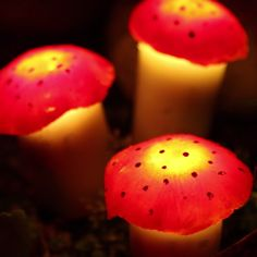 Diy Discover These Solar-Powered Mushroom Lawn Lights Are An Adorable Addition To Your Backyard Pilz-Rasen-Lichter Garden Crafts Garden Projects Craft Projects Garden Ideas Fairy Crafts Fun Crafts Diy And Crafts Rock Crafts Homemade Crafts