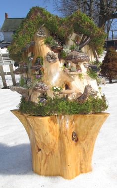 THESE PEOPLE WANTED A BIG STUMP LIKE YOURS, SO THEY SIMPLY SAT THEIRS ONTO ANOTHER STUMP TO CREATE A FAIEY CONDO AS YOU HAVE...Carved out  Cedar Stump Fairy Bird House / Gnome by ARTWORKS4ME, $375.00