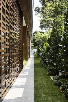 Gallery of Viewing Back House / HYLA Architects - 22 Modern Backyard, Modern Landscaping, Front Yard Garden Design, Modern Front Yard, Courtyard House, Courtyard Ideas, Courtyard Design, Modern Landscape Design, Gazebo