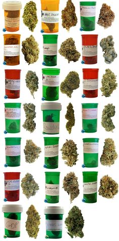 Here's helpful chart to identify certain strains of marijuana. While I do agree with the majority of photos represented, I have some reservations about the GDP (Grand Daddy Purple). GDP usually has a  nice purplish tint to it. Also, the smell test usually wins every time when one can't identify a certain strain. So says she who would know…  Click on the chart above to see larger version.   (via reddit)