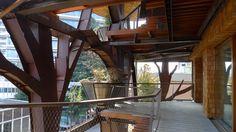 25 Verde, Luciano Pia. © Luciano Pia / Alessio Guarino Cabin, House Styles, Home Decor, Green, Decoration Home, Cabins, Cottage, Interior Design, Home Interior Design