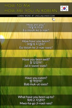 Learn how to say how are you in Korean