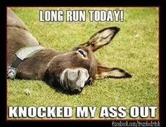 Running Humor #63: Lon run today! Knocked my ass out.                                                                                                                                                                                 More