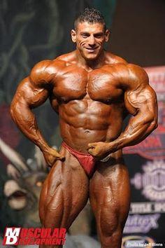 BODYBUILDERS IN RED POSING SUITS: arab bodybuilder