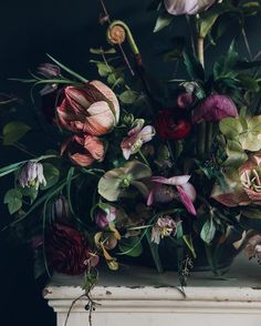 Late Winter Florals by Swallows & Damsons + Best of the Web (Design*Sponge) Dark Flowers, Cut Flowers, Beautiful Flowers, Midnight Garden, Floral Photography, Arte Floral, My Flower, Flower Designs, Planting Flowers