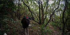 Trekking panoramico del 1° Maggio lungo la collina di Ostuni
