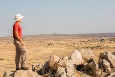 View over the Randilien Wildlife Management Area. Monument Valley, Wildlife, Management, Nature, Travel, Naturaleza, Viajes, Trips, Off Grid