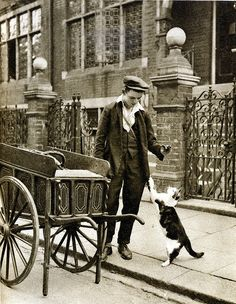 London in the 1920's-the cats-meat man