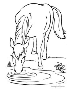 Free printable horse coloring sheets