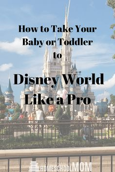 Disney World can be amazing but it can be overwhelming as well. Here are some awesome tips to take your baby or toddler to Disney World like a Pro.