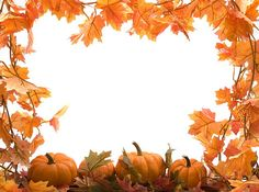 Watch the beauty of nature during thanksgiving celebration when the autumn…