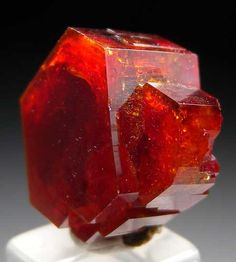 Vanadanite from Mibladen, Morocco Minerals And Gemstones, Rocks And Minerals, Natural Gemstones, Mineralogy, Rare Gems, Rocks And Gems, Stones And Crystals, Gems Jewelry, Gold
