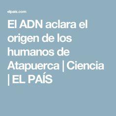El ADN aclara el origen de los humanos de Atapuerca   Ciencia   EL PAÍS