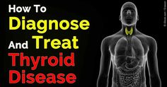 Your thyroid is responsible for producing three types of hormones: triiodothyronine, thyroxine, and diiodothyronine. http://articles.mercola.com/sites/articles/archive/2015/10/28/how-thyroid-gland-functions.aspx