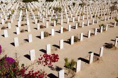 Tour a El Alamein desde Alejandria #tour_de_Alejandria http://www.maestroegypttours.com/sp/Excursi%C3%B3nes-en-Egipto/Alejandria-Excursiones