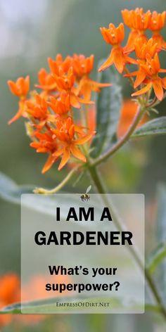 100+ Gardening Quotes ideas   quotes, garden quotes ...