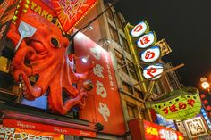 Travel Bugs: Touring the Famous Street of Dotonbori, Osaka