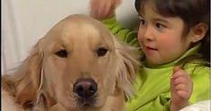 Einstein, Bing Video, Cute Baby Animals, Movies To Watch, Videos, Cute Babies, The Neighbourhood, The Neighborhood, Cutest Baby Animals