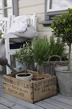 greenery on the porch... love the use of the rustic mixed containers.