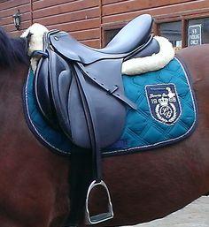 If I were to ever get horse who enjoyed English!