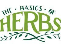 The Basics of Herbs: Cooking Cheat Sheet
