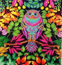 Resultado de imagem para livro de colorir jardim das flores