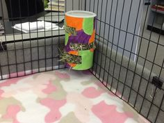 Hay bin for guinea pigs made out of oatmeal canister.  Works so well and much cheaper than a hay rack.