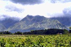 mountain in Hawaii