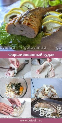Recipe with photo- Фаршированный судак. Рецепт с фото Stuffed Pikeperch. How To Cook Fish, How To Cook Chicken, Fish Varieties, Shellfish Recipes, Fatty Fish, Russian Recipes, Fried Fish, Fish Dishes, Fish And Seafood