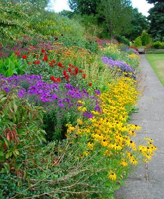 Bordering on Genius at Great Comp Garden!   Flickr - Photo Sharing!