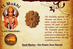 Benefits of Eleven Mukhi Rudraksha Goddess: Lord Hanuman / Ruling Planet:  This Rudraksha represents Lord Hanuman and bestows on the wearer, courage and strength. It increases the power of speech, self-confidence and concentration. This Rudraksha spreads name and fame of the wearer. It also protects from accidental death. The wearer becomes fearless. Also helps in meditation practices. http://www.rudralife.com/Rudraksha/details.php?id=7