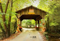Covered bridge on River Bend Road in Ellijay, Georgia.  Photography by Denise J. Collins Blue Ridge Georgia, Georgia Usa, Georgia On My Mind, Helen Georgia, Helen Ga, Spring Family Pictures, Covered Bridges, Mountain Vacations, Georgia Mountain Cabins