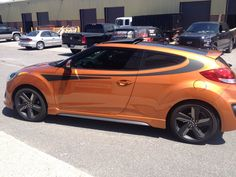 Best Of 2016 Veloster Rally