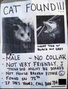 """Hahaha This is Hilarious. It reminds me of the commercial with the possum and the dad buys its for his kids..""""Dad I think It's dead""""- kids,  """"No he'll come around, hes just playing possum"""" Hissing... """"There he is"""""""