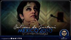 Salinas de Gortari, MÉXICO 2030 y Carmen Aristegui