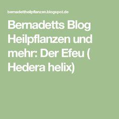 Bernadetts Blog Heilpflanzen und mehr: Der Efeu ( Hedera helix)