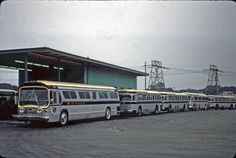 A great picture of some of our transit suburbans (and a GM 4104 snuck in).  Learn about our history by clicking on the link (above right) or find us on YouTube @ BusesOnline