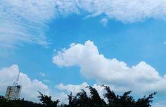 Watching the clouds from my window 7.0. Desde mi #ventana 7.0.  #nubes #clouds #ventana #sky☁ #photography #fotografias  #photographyislove #verano #sunset #summer #cielo #samsungs5 #edificios #guayaquil #guayaquilesmidestino #sky #beatiful #photographyislifee #colorsofsky #fotografia #colorsofsunset #samsungs4#horizon#blue #clouds #ecuador🇪🇨 #heroe593 #paisajesecuador593 #samsungs4 #sunset_pics#skylovers#blue#samsungs5photography