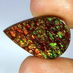 100% Natural Ammolite Multi Color Pear Cabochon Mind Blowing Gemstone 16.30Cts #Handmade