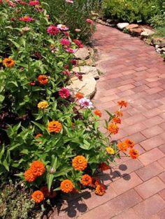 Nice garden walkway!
