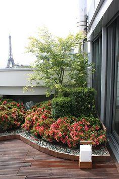 Jardin japonais en terrasse (via Flickr)