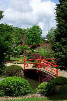 #Japanese Gardens, #Toowoomba Such a great photo, really captures how beautiful the Japanese Gardens are.