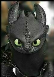 Httyd Hidden World Toothless Toothless Tattoo, Toothless Dragon, Dragon 2, Toothless Night Fury, Night Fury Dragon, Song Night, Dragon Series, Jack Frost And Elsa, Frozen And Tangled
