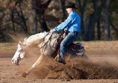 Schmersal Reining Horses